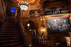 猫音乐展示在民事剧院在奥克兰新西兰 免版税库存图片