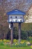 猫鸽房 库存照片