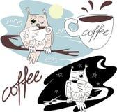 猫头鹰喝咖啡 免版税库存图片
