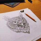 猫头鹰图画 图库摄影