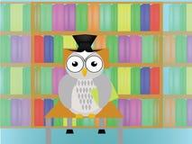 猫头鹰在图书馆里 库存图片
