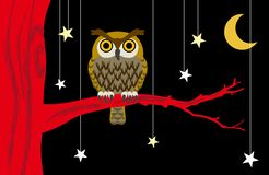 猫头鹰在繁星之夜 库存图片