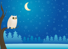 猫头鹰多雪的冬天 免版税库存照片
