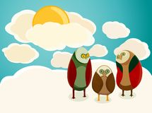 猫头鹰天空 库存图片