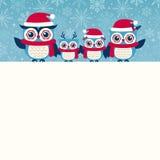 猫头鹰家庭动画片圣诞节设计 免版税库存照片