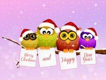 猫头鹰家庭在圣诞节的 库存图片