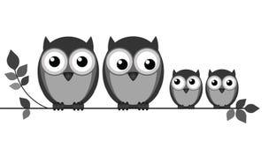猫头鹰家庭 免版税库存图片
