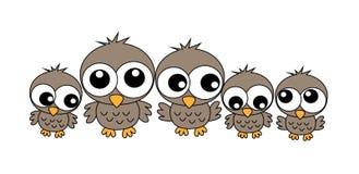 猫头鹰家庭 库存图片