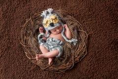 戴猫头鹰帽子的睡觉的新出生的男婴 库存图片
