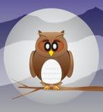 猫头鹰有月亮背景 免版税库存图片