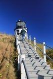 猫头鹰的顶头灯塔驻地 免版税图库摄影