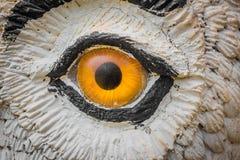 猫头鹰眼睛凝视 库存图片