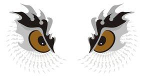 猫头鹰眼睛 免版税图库摄影