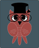 猫头鹰老师,平的样式的科学家教授, 免版税库存照片