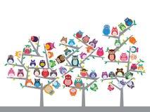 猫头鹰颜色样式树 免版税库存图片