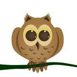 猫头鹰,欧洲产之大雕 免版税库存照片