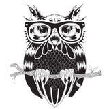 猫头鹰,纹身花刺设计,传染媒介图解图画在行家玻璃的 库存例证