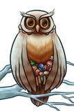猫头鹰从寒冷的救球刚孵出的雏 库存例证