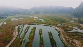 猫BA海岛的沼泽地的顶视图在海附近的土地的 乡下的早晨阴沉的风景  股票视频
