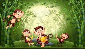 猴子在竹森林里 库存例证
