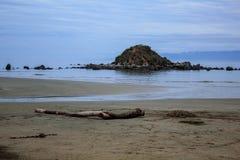 猴子海岛在南方,南岛,新西兰 免版税库存图片