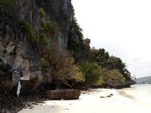 猴子海岛左handside视图  免版税库存图片