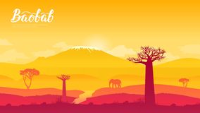 猴面包树树在纳米比亚,非洲土地页wallapapers设计观念 向量例证