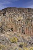 玄武岩峭壁, Sun湖干瀑布国家公园,华盛顿州 免版税库存图片