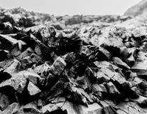 玄武岩晃动山海细节冰岛 免版税库存图片