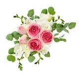 玉树叶子、小苍兰和桃红色玫瑰在壁角arr开花 免版税库存图片