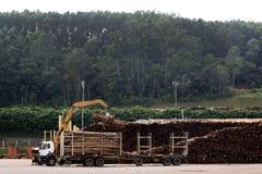 玉树记录卡车 免版税库存图片