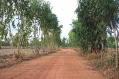 玉树路线农村人口的后面家。 免版税图库摄影