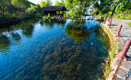 玉水Lijiang的Village湖,中国 免版税图库摄影