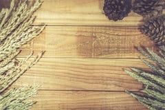 玉米、米和麦子在木桌上 免版税图库摄影