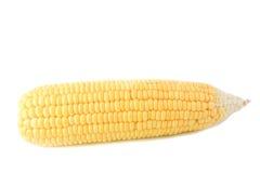 玉米。 库存照片