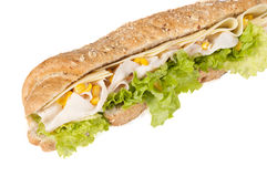 玉米三明治 库存照片