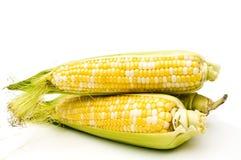 玉米三 免版税库存照片