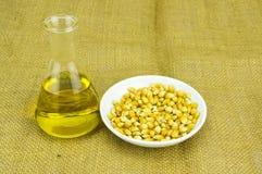 玉米与试管的引起的对氨基苯甲酸二生物燃料 免版税库存图片