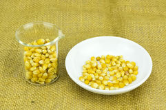 玉米与试管的引起的对氨基苯甲酸二生物燃料 免版税图库摄影