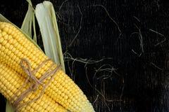 玉米两个玉米棒在一张黑木桌上的 图库摄影