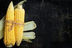 玉米两个玉米棒在一张黑木桌上的 免版税图库摄影