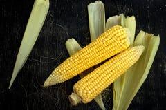 玉米两个玉米棒在一张黑木桌上的 免版税库存图片