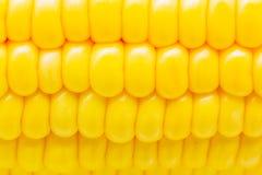 玉米五谷与水滴特写镜头的 免版税库存照片