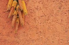 玉米农村场面墙壁 免版税库存照片