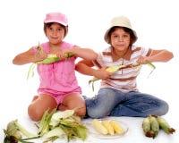 玉米剥壳 库存图片