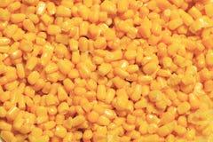 玉米剪切 库存照片
