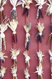 玉米印地安人行 免版税库存图片