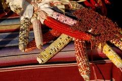 玉米印地安人 库存照片