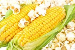 玉米和玉米花 免版税库存图片