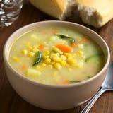 玉米和绿皮胡瓜杂烩汤 库存照片